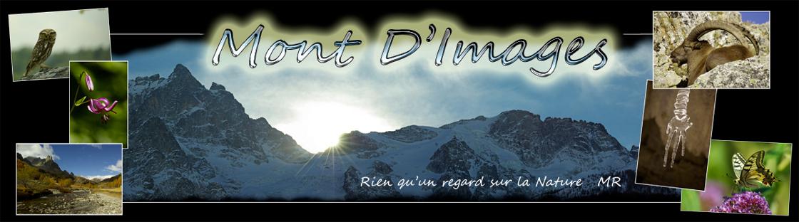 Mont D'Images